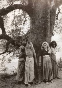 chipko-tree-huggers